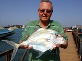 Alexandria Pompano/African Threadfish