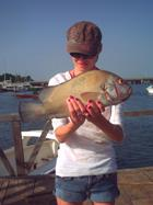Jay and Thick-lipped Grouper
