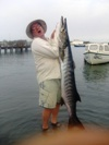 Massive Guinean Barracuda caught in the Gambia River