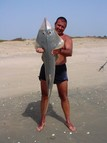 Shore Angling for Guitarfish